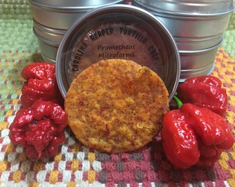 Carolina Reaper Tortilla Chip --- Quite Possibly The World's Hottest Chip And If Not A Strong Number Two!!!