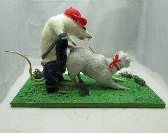 Taxidermy rat with sheep. Adult theme and humor free shipping