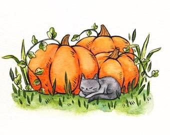 Pumpkin Kitty fine art print