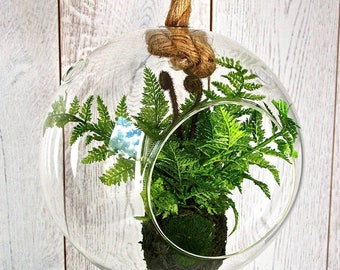 Sphere Hanging Terrarium with Faux Fern PA299FS
