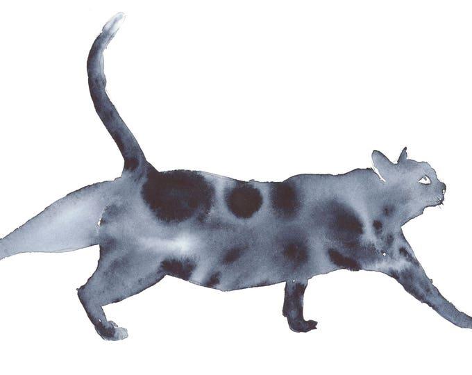 Indigo Cat 3