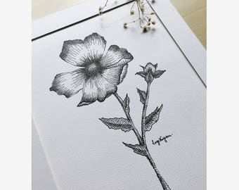 Cosmos Botanical Illustration Art Print - Dotwork Pen and Ink Floral Drawing, Traditional Artwork