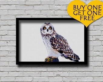Cross Stitch Pattern Short Eared Owl Animal Xstitch Pattern Short-eared Owl Pattern PDF Format Modern Home Decor Bird E Pattern