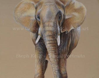 "Elephant: Original Artwork - 10"" x 8"""