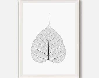 Modern Wall Art, Botanical Print, Skeleton Leaf Print, Skeleton Leaves Art, Skeletonized leaves, Minimalist Art, Black and white, Nature art