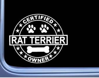 "Certified Rat Terrier L287 Dog Sticker 6"" decal"