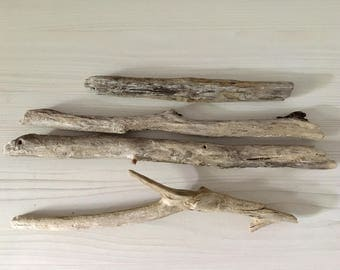 Driftwood - assortment - branches 4 branches wood seawood, driftwood