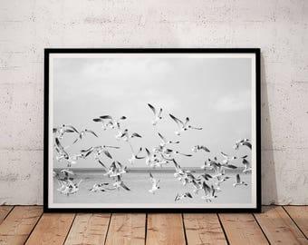 Birds Print, Birds Printable, Ocean Printable Art, Ocean Wall Art, Ocean birds Print, Wave Wall Art, Wave Printable, black and white birds