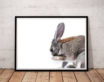 Rabbit Print, Bunny Print, Woodland Nursery Decor, rabbit printable, bunny printable, Digital Download, animal prints for nursery