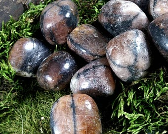 Chiastolite tumbled stone andalusite tumbled stone natural crystals for protection tumbled crystals tumbled stones