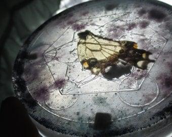 Metatron Butterfly Wing Orgone Generator