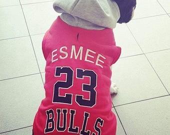 Bulls sweatshirt for French bulldog