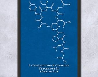 Framed Oxytocin Molecule Science Print Gift, Hormone, Neuropeptide, Neurochemistry, Biology, Biochemistry, Chemistry, Framed Science Print