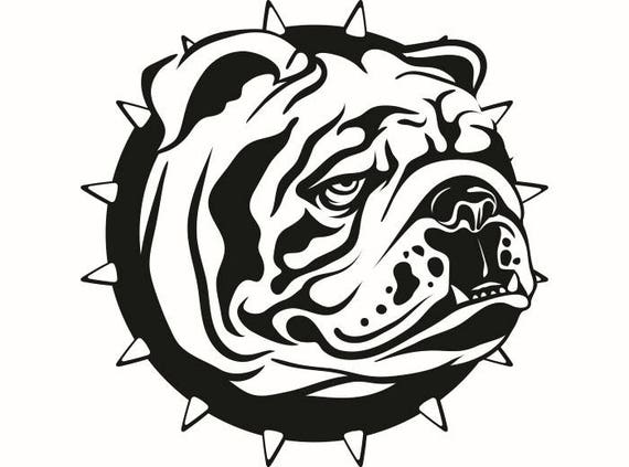 English Bulldog 6 American Mascot Head Spiked Collar Dog