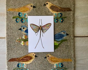 Insect postcard A5 with envelope - Print of my Handdrawn Illustration