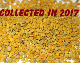 Bee Pollen collected in Spring, 2017! Natural, Organic Bee Pollen collected in Latvia, SEASON 2017! 1,76oz (=50gr) Blütenpollen. Homemade