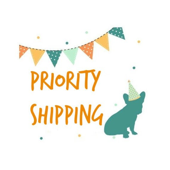 Priority Shipping Upgrade - Domestic Only