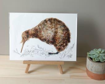Mr Kiwi, New Zealand native bird illustration, Large print from original watercolor and ink painting artwork, Wild life wall art