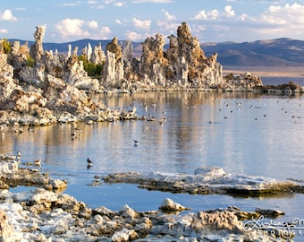 "Mono Lake Print | ""Mono Lake Tufa View"" 