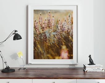 "Nature Print, Flower Print, Flower Art, Botanical Art, Instant Download, Printable Art, Flower Art Print, Nature Photography ""LUPINE DAZE 1"""