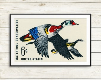 wood duck, duck print, ducks unlimited, duck gifts, wood duck art, wood duck poster, waterfowl conservation, postage stamps, US postage art