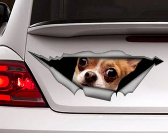 Funny Chihuahua car decal , chihuahua car decal, 3d decal,  car decoration, pet decal, dog sticker, dog decal