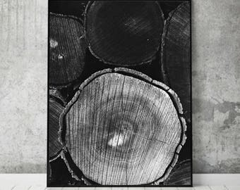 Scandinavian Print, Nordic Wall Art Decor, Tree Poster, Tree Trunks Texture Photography, Modern Minimalist, Scandi Nature Poster Black White