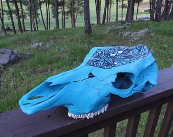 Real Painted Skull / Hand painted Cow Skull / Real Cow Skull/ Painted Cow Skull / Skull Decor / Skull Art