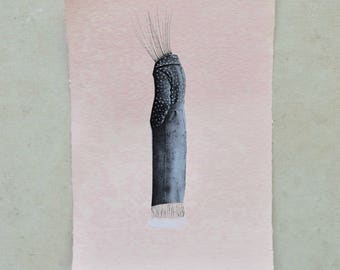 collage, mixed media, illustration, art, contemporary art, Collage Rottenman Editions