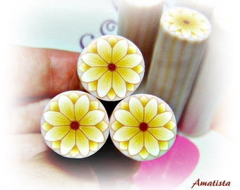 Polymer clay flower cane: Raw polymer clay cane - Millefiori cane supplies - White and yellow flower cane - Supplies for jewelers