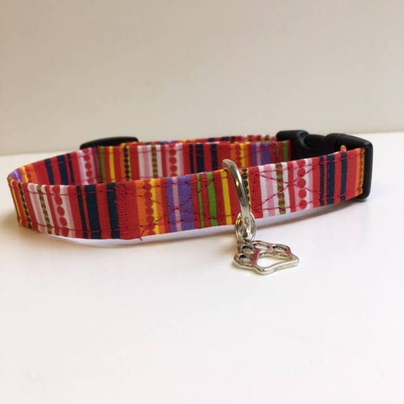 Sale Dog Collar, Striped Dog Collar, Harley, Cute Dog Collar, Dog Collar UK