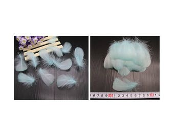 Set of 5 small light blue feathers