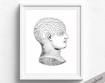Printable Phrenology Head Art, Vintage Psychology Illustration, Psychology Art Print, Vintage Medical Illustration