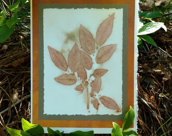 Eco Printed Greeting Card - Suitable for framing