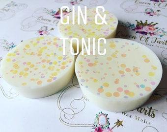 1 Gin & Tonic Soy Wax Tart