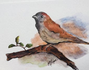 Sparrow greeting card/Watercolor and Ink/Bird Greeting Card/Sparrows/5 x7 card/card and envelope/Sparrow watercolor/Wildlife watercolor