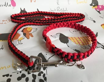 Dog Collar & Leash Gift Set
