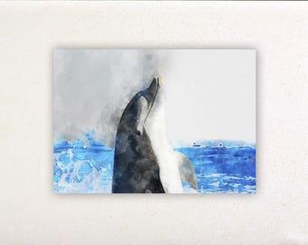 Dolphin - Watercolor prints, watercolor posters, nursery decor, nursery wall art, wall decor, wall prints | Tropparoba - 100% made in Italy