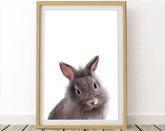 Baby Rabbit Print, Digital Download, Bunny printable art, Kids Room Decor, Woodland animals
