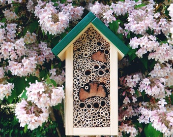 Insects-apartment hand-crafted made - green roof