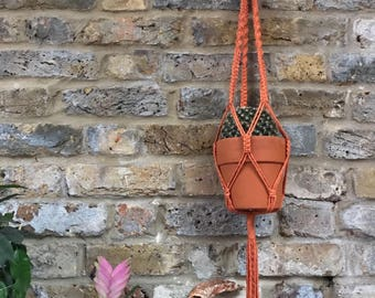 Terracotta Twist Plant Hanger