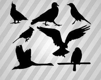 Bird silhouettes - Svg Dxf Eps Silhouette Rld RDWorks Pdf Png AI Files Digital Cut Vector File Svg File Cricut Laser Cut