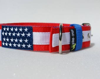 Stars and stripes collar.