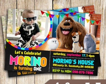 Secret Life of Pets Party, Secret Life of Pets Invitation, Secret Life of Pets Birthday, Secret Life of Pets Invite, The Secret Life of Pets