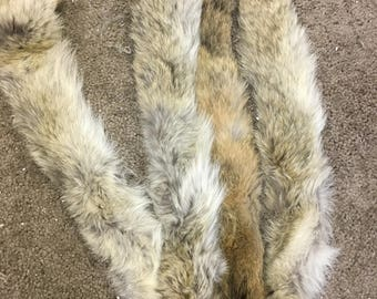 "coyote collars, heavy fur, lined, 28"" by 2.25"", four"