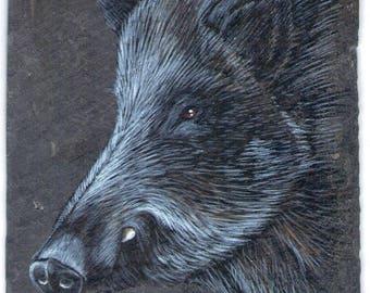 boar acrylic painting on Slate