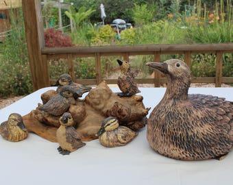 Mandarin Duck and Chicks