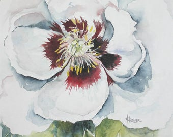 Heart of Peony - Figurative watercolor