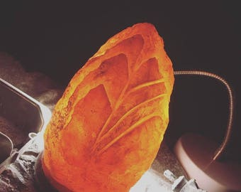 Hand Carved Himalayan Salt Lamp