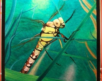 Oil on prepared canvas painting 'Dragonfly'